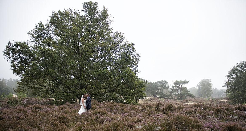 Bruiloft bergen op zoom