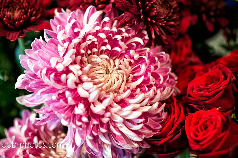 Bloemenstal Halsteren 09