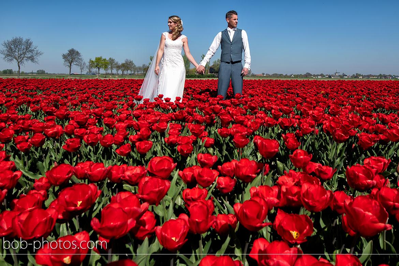 tulpenvelden Bruidsfotografie Tholen