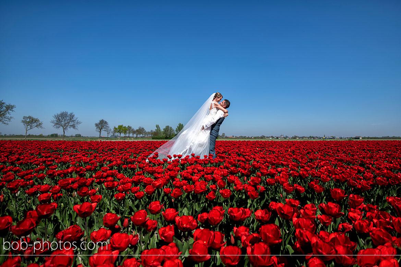 Tulpenveld Tholen Bruidsfotografie